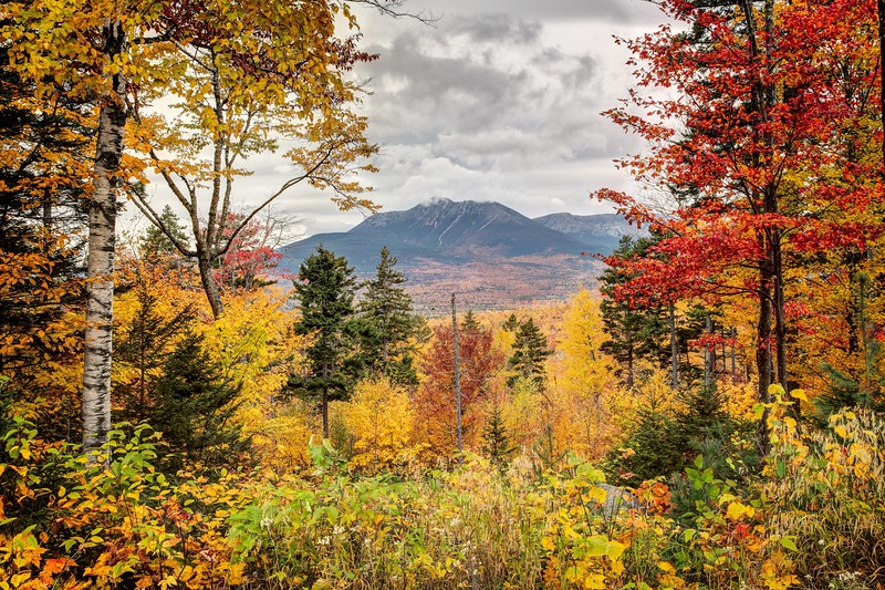 Katahdin Woods and Water National Monument, the newest park in the national system.