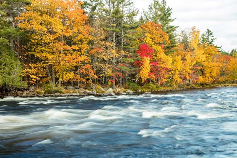 Penobscot River along the Golden Road