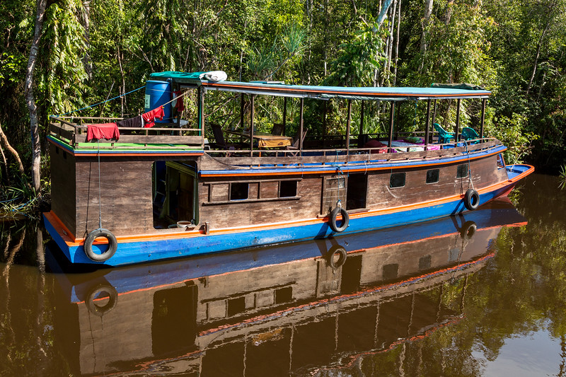 Here is another colorful boat. People rent these for days to give them access to view the orangutans.