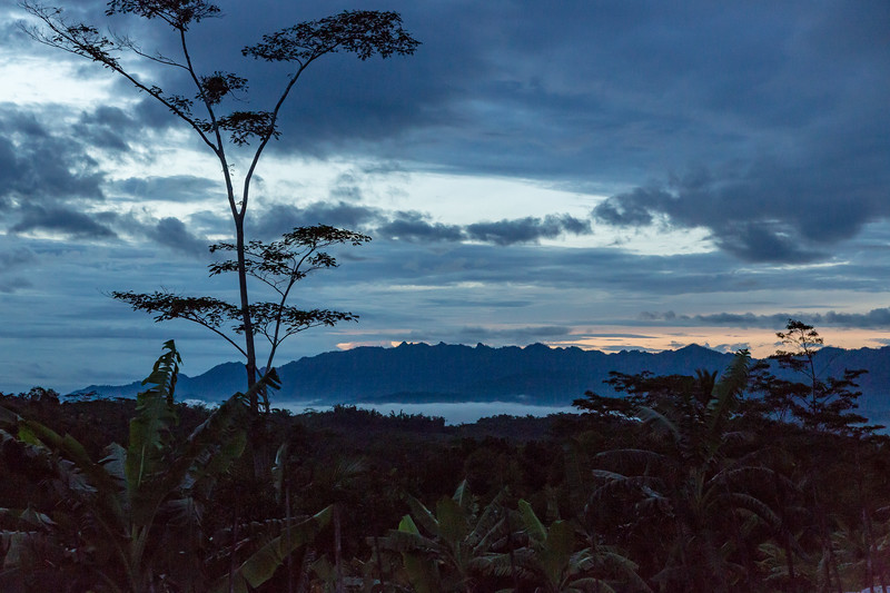 While in Java we toured the beautifully-terraced rice fields. We arrived early to wait for sunrise.