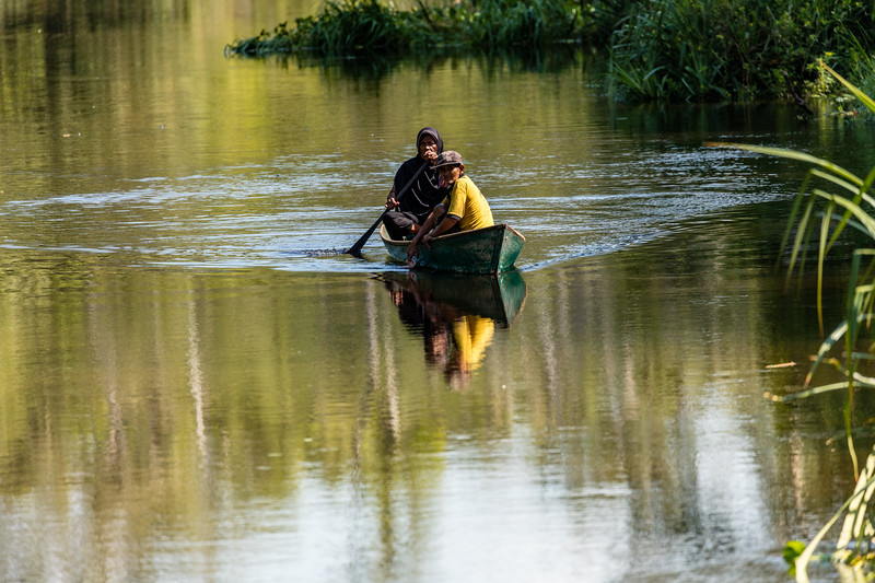 An easier means of transportation in the jungle is to canoe on the river.