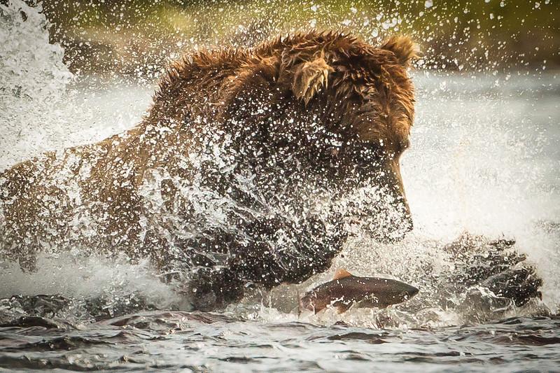 Fishin' but one got away