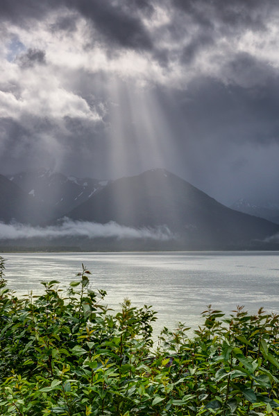 Along the Turnagain Arm