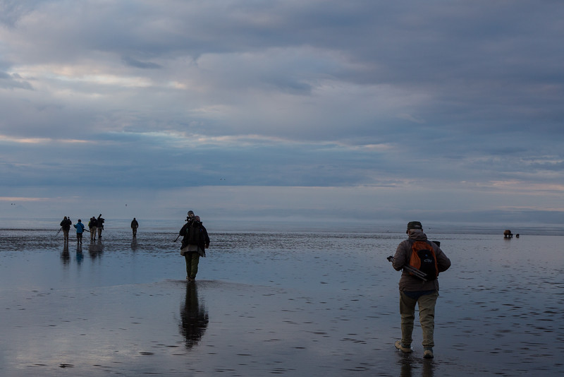 Our photo group walking out to photograph bears clamming. Julie in the lower right