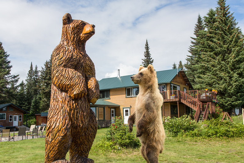 We saw the two cubs playing with this bear statue when eating one evening. I didn't have my camera so I re-created this scene with a little Photoshop magic
