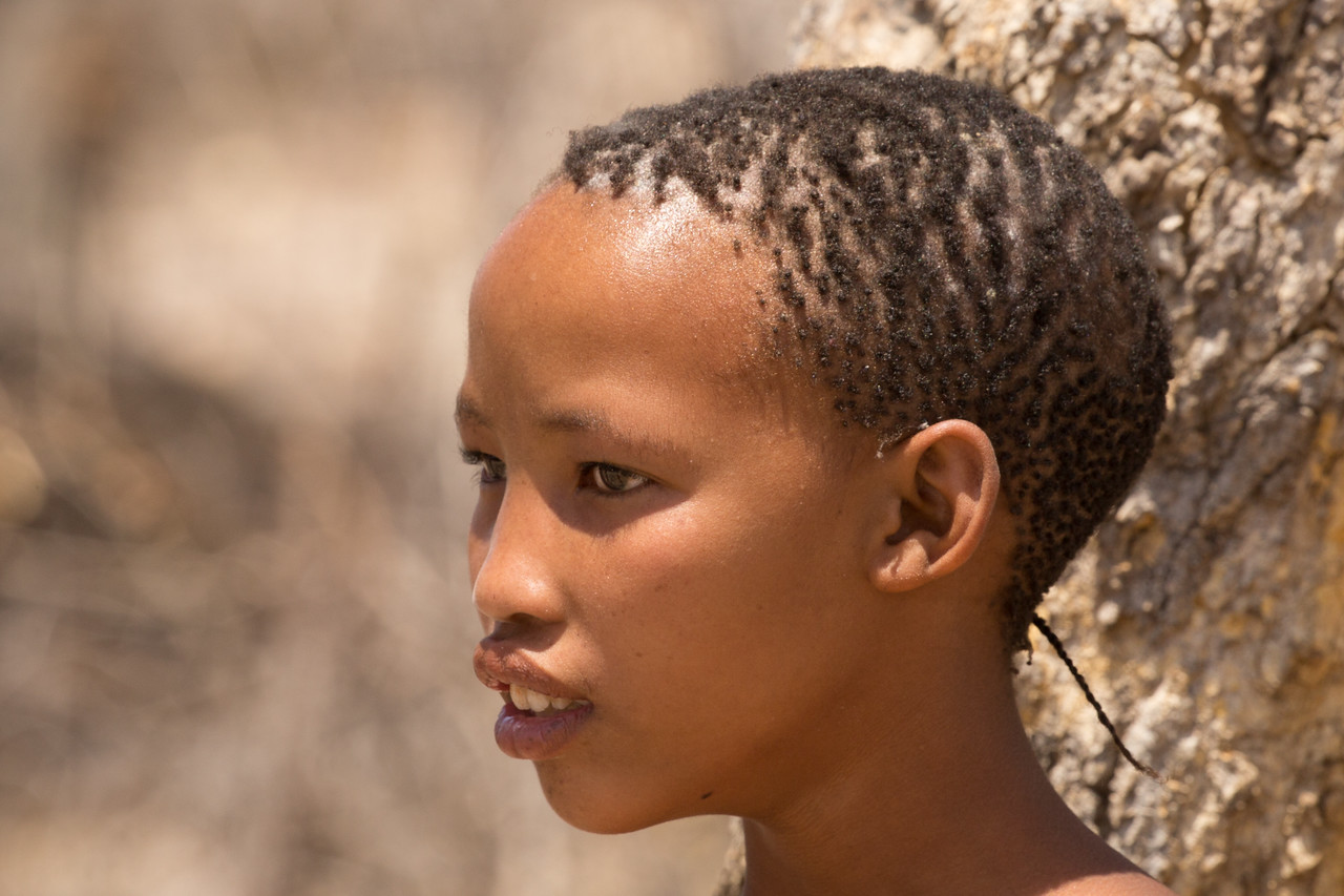 The Bushmen population is declining fast; only about 82,000 remain