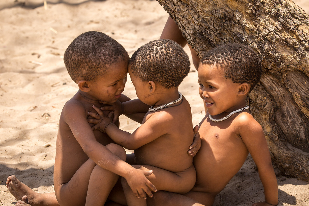 All human races have their origin with the Bushmen
