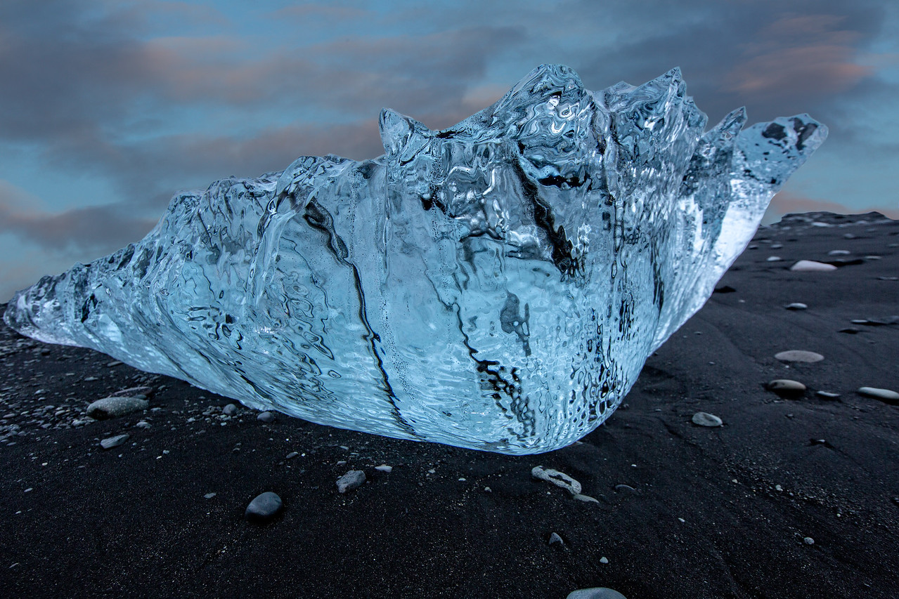 Ice seashell