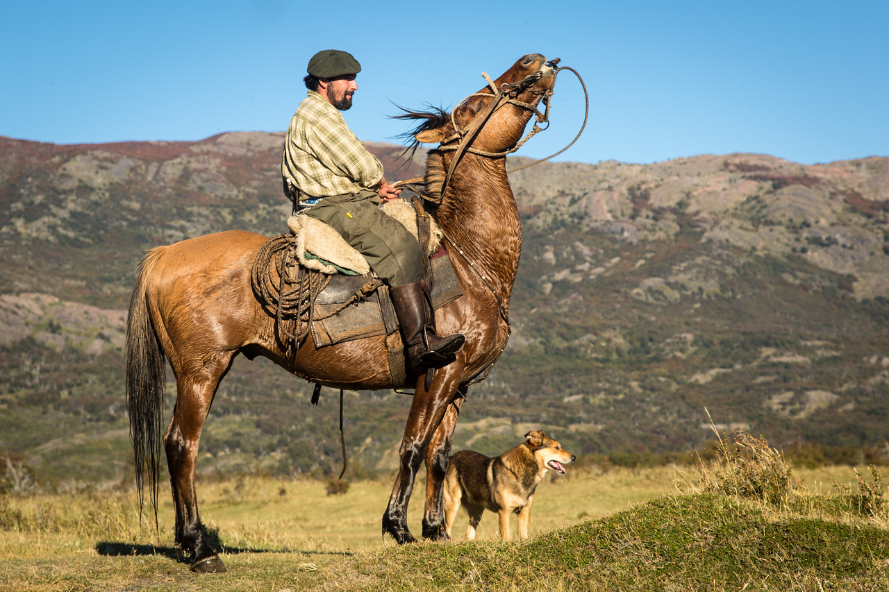 One afternoon we visited Rio Serrano Estancia to have this gaucho, his horse, and eager dog demonstrate the horsemanship that Argentinians are so rightfully proud.