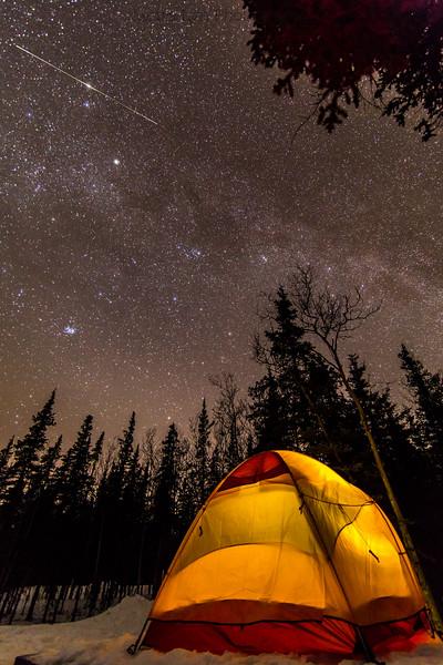 Taken in Denali National Park in April 2014,