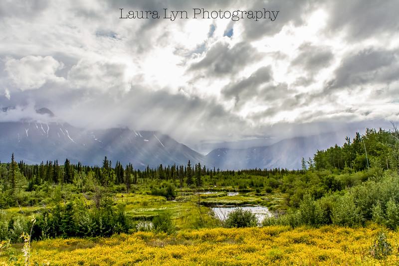 Taken in Denali National Park in September 2014.
