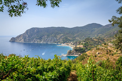 On the hike to Vernazza from Monterosso through the vineyards