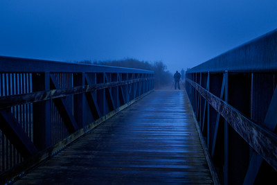 Foggy morning blue hour at the bridge over Limantour Estero