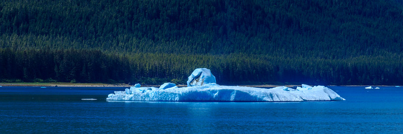 "We called this last iceberg, ""The Submarine"""