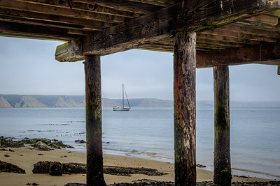 Moured sailboat in Drakes Bay