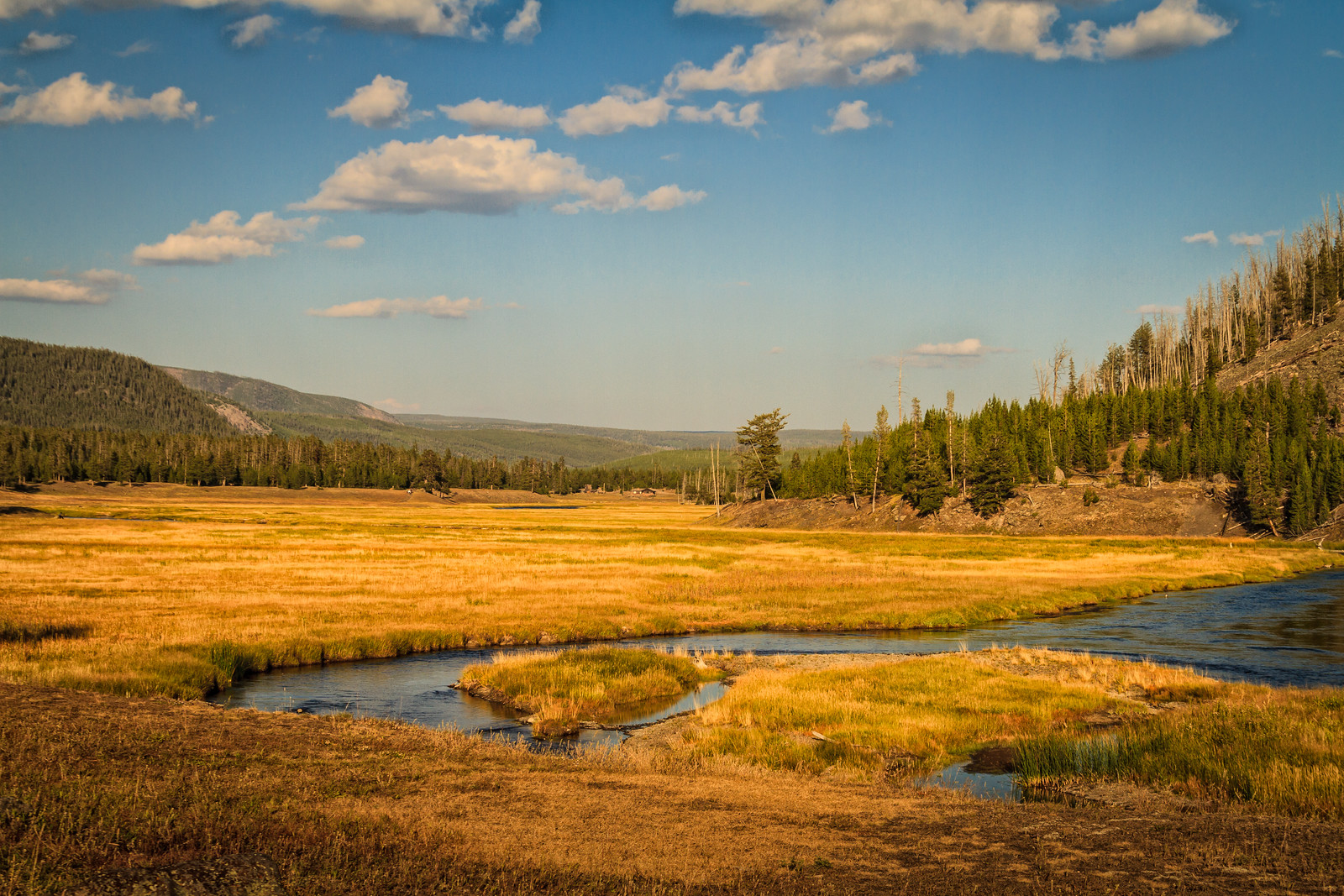 Madison River at evening