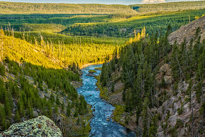 Gibbon River in Yellowstone Nat'l Park