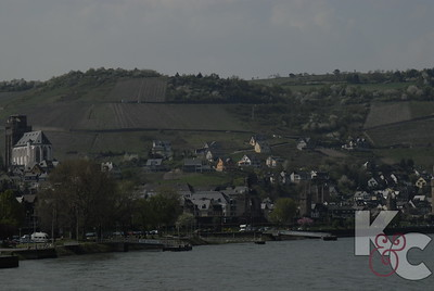 Wine-Growing Region of Oberwesel