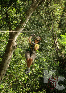 Kathy in the Treetops