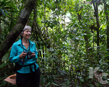 Kathy in the Rainforest