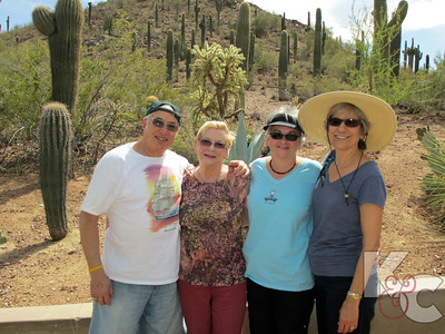 At Desert Botanical Gardens