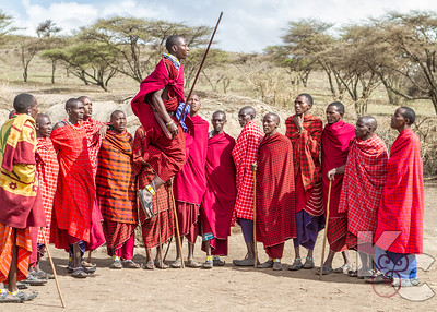 Maasai Men Doing Courtship Dance