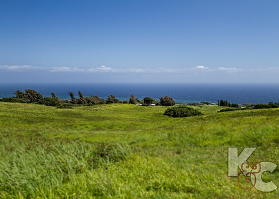 Hilltop With Ocean View