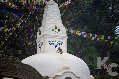 Stupa on Approach to Monkey Temple