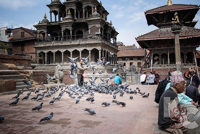 Feeding Pigeons in Durbar Square Patan
