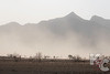 Winds Kicking Up Dust In The Namib Desert