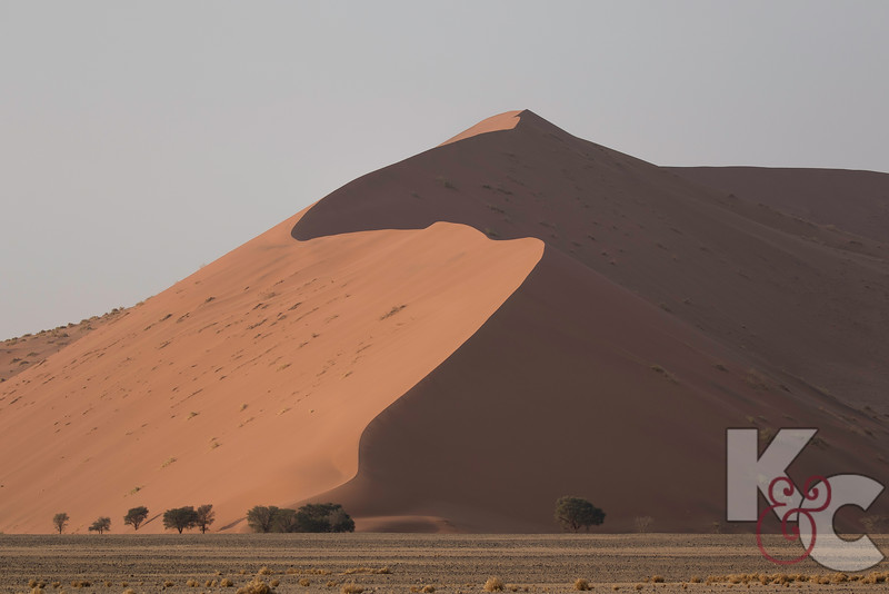 Sossusvlei Sand Dunes - This Dune Is Known As Big Daddy