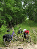 Great Dismal Swamp on Bikes (April 2006)<br /> Led by Mark Garland