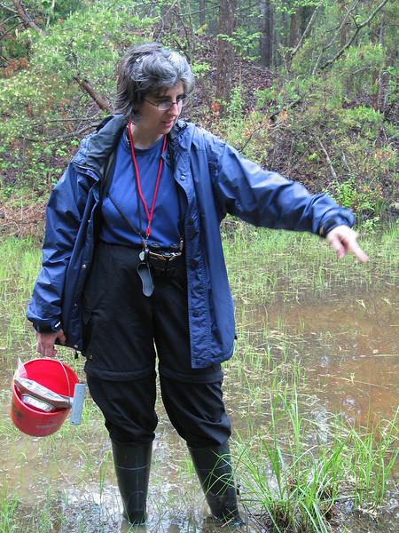 Amphibians of Jug Bay (April 2005)<br /> Led by Karyn Molines