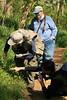 ANSers<br /> by Arlene Gmitter<br /> Walk #1: Carderock Recreation Area, April 20, 2013