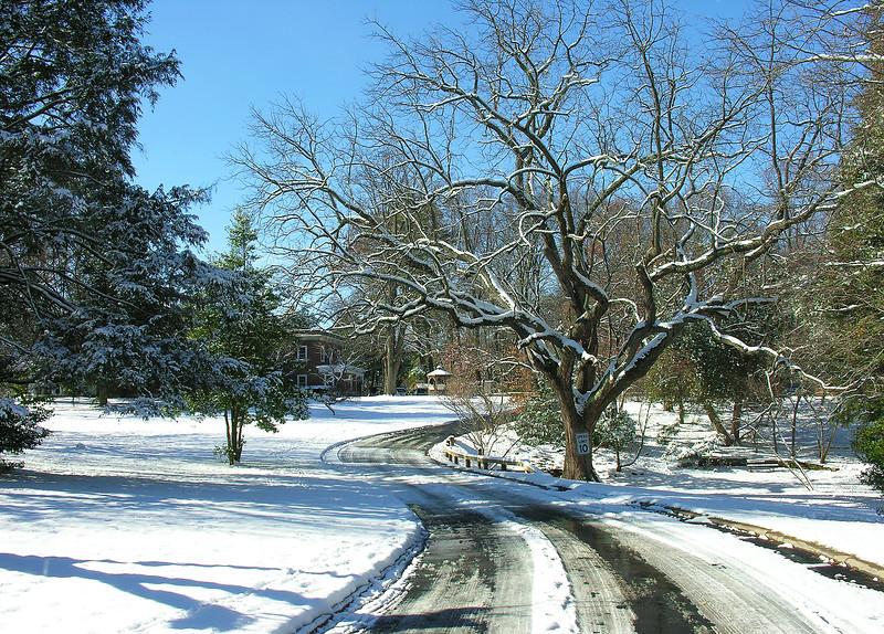 Woodend Winter Driveway - DSCN7974