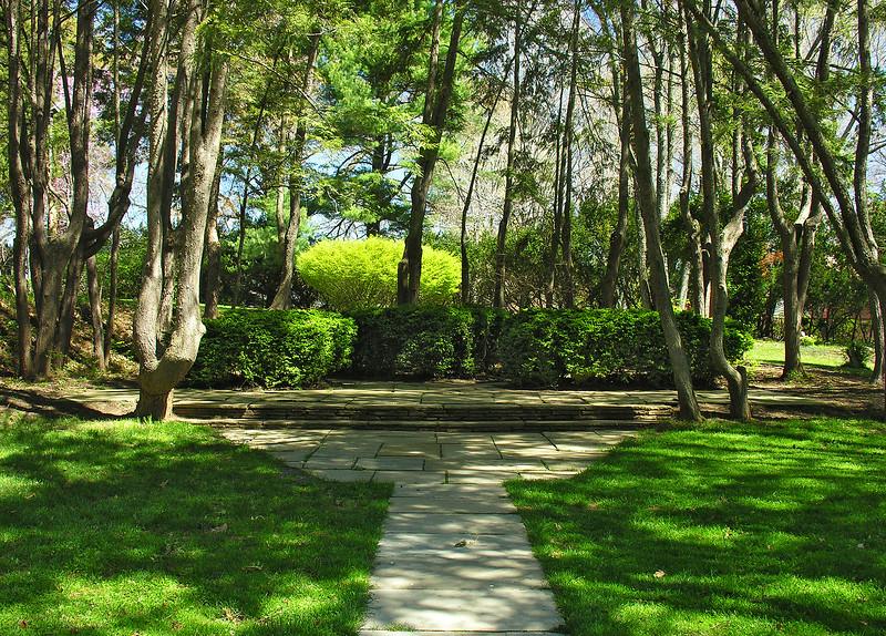 Woodend Spring Hemlock Grove - DSCN5617