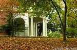 Autumn - DSCN7812 260px