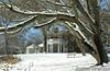 Winter - DSCN7938 260px