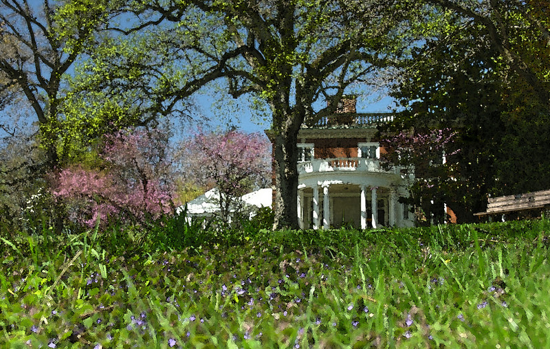 East lawn in spring <I>(watercolor effect)</I> Woodend Sanctuary, Chevy Chase, MD