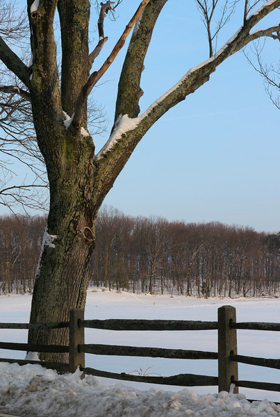 Snow-covered farmland in Montgomery County Agricultural Reserve<br /> Barnesville, MD
