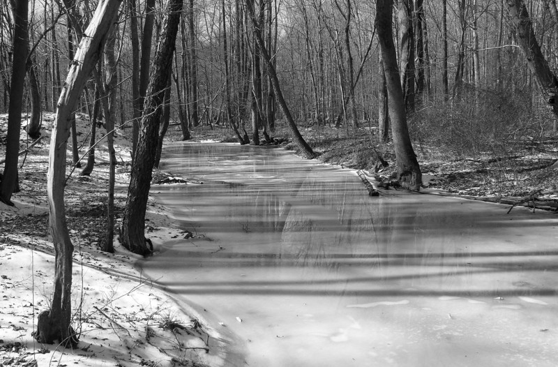 Patuxent River feeder stream in snow<br /> Fran Uhler Natural Area, Bowie, MD