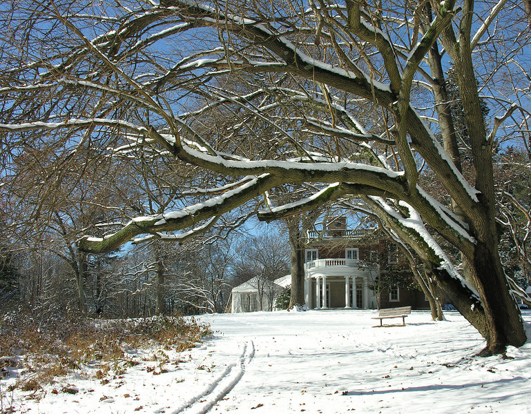 East lawn and meadow in winter<br /> Woodend Sanctuary, Chevy Chase, MD