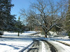 Entrance drive in winter<br /> Woodend Sanctuary, Chevy Chase, MD