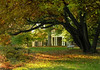 East lawn in early autumn<br /> Woodend Sanctuary, Chevy Chase, MD
