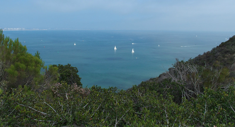 Sailboats in the Pacific off Point Loma<br /> San Diego, CA
