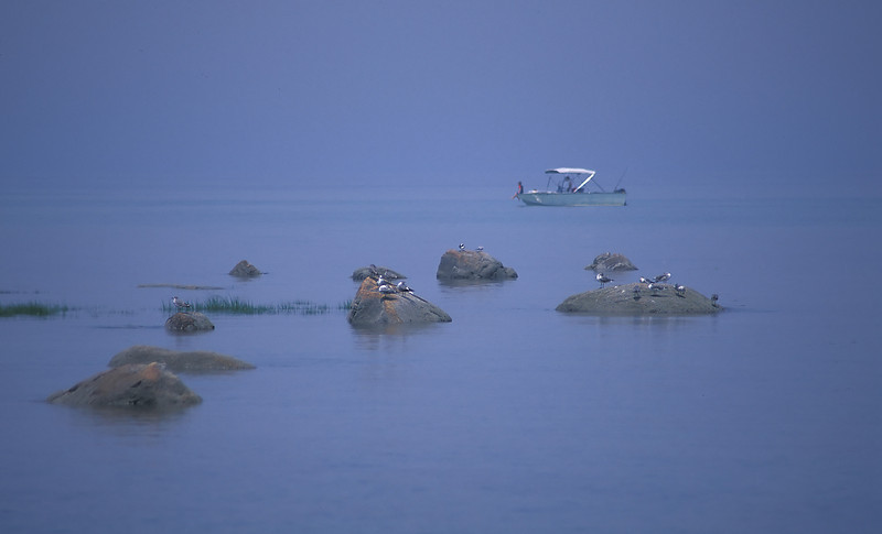 Hazy, lazy day in Cape Cod Bay<br /> From Crowe's Pasture Beach, Cape Cod, MA