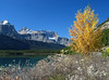 Autumn foliage at Upper Waterfowl Lake<br /> Banff National Park, Alberta, Canada