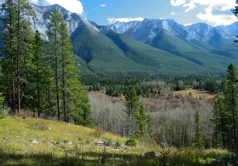 View from Troll Falls trail<br /> Kananski Country, Alberta, Canada