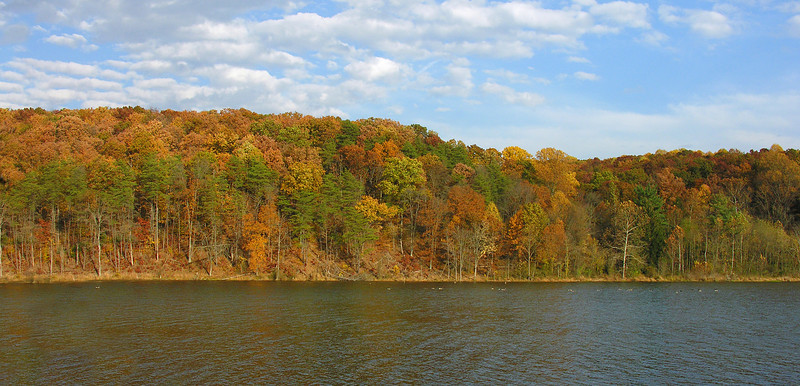 Autumn foliage at lower Ten Mile Creek<br /> Boyds, MD
