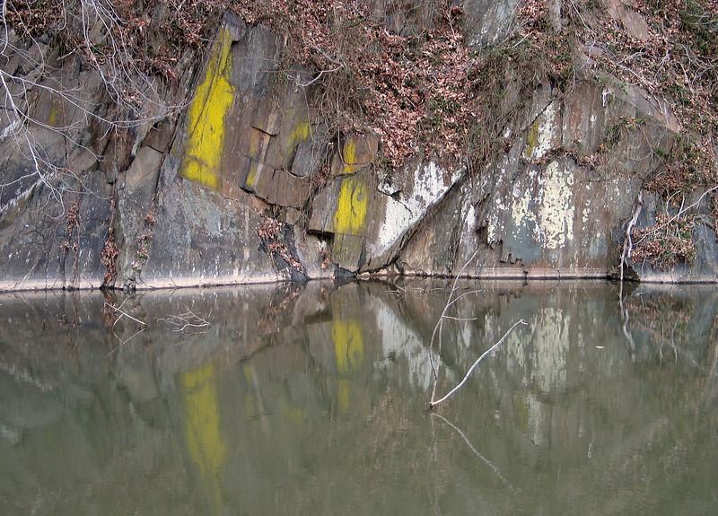 Eggyolk lichen (<I>Candelariella</I>) on blasted boulders along the canal C&O Canal Nat'l Historical Park near Carderock Recreation Area, Western Montgomery County, MD